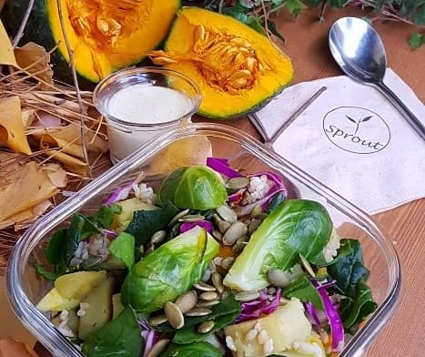 Harvest veggie salad